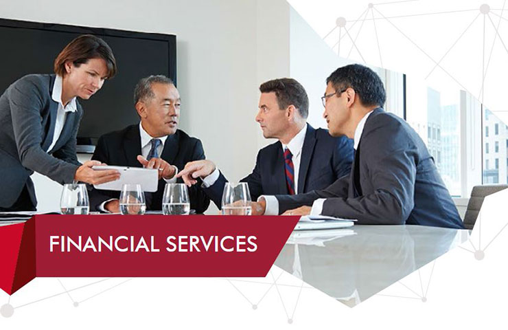 2017 Japan Financial Services Technical Skills