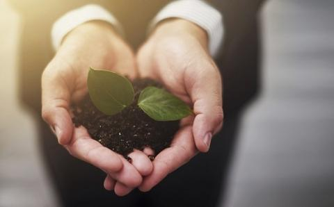 Corporate social responsibility: How to do it right