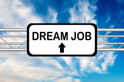 Maximising your job search: How to secure your dream role